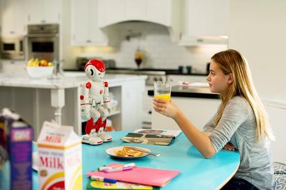 Ubtech's Alpha 2 robot (photo credit: Ubtech)