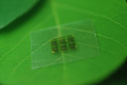 Researchers at the University of Wisconsin-Madison have developed computer chips made from cellulose nanofibril (CNF), derived from wood fiber.