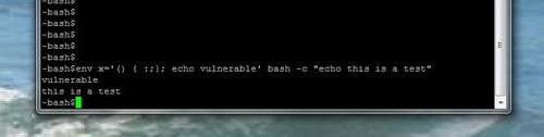 Shellshock vulnerability test for Bash