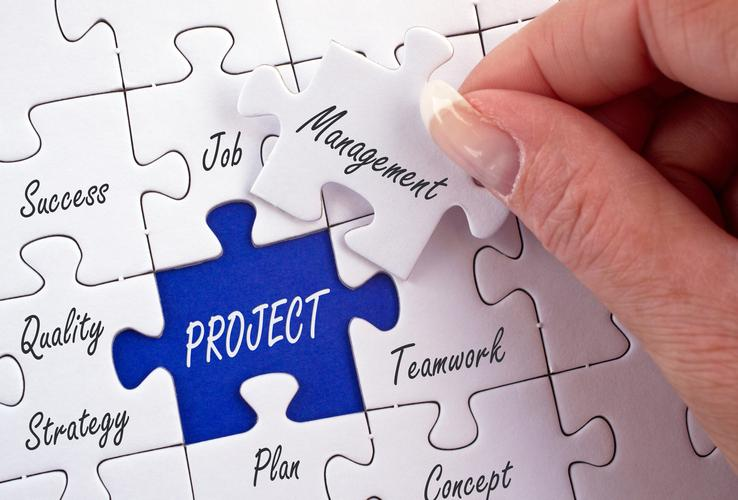 7 ways project managers can anticipate avoid and mitigate