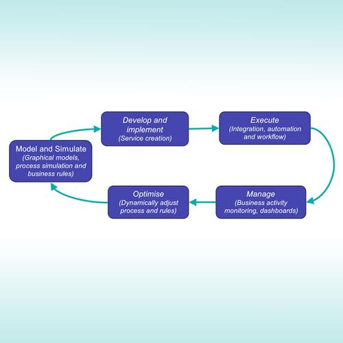 Figure 1: Business Process Management – Process improvement cycle