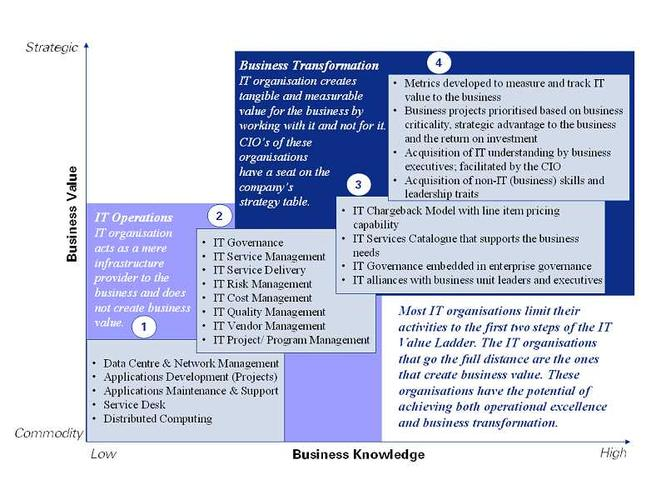 <b>Figure 1: The IT value ladder</b>