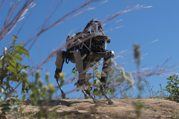 Spot, a quadruped prototype robot developed by Google's Boston Dynamics, walks down a hill during a demonstration at Marine Corps Base Quantico, Va., Sept. 16, 2015. Credit: Eric Keenan/DOD