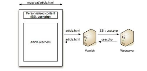 Varnish acts as a Web accelerator, speeding up operations for the web server.