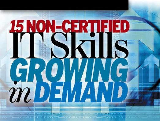 In Pictures: 15 non-certified IT skills growing in demand