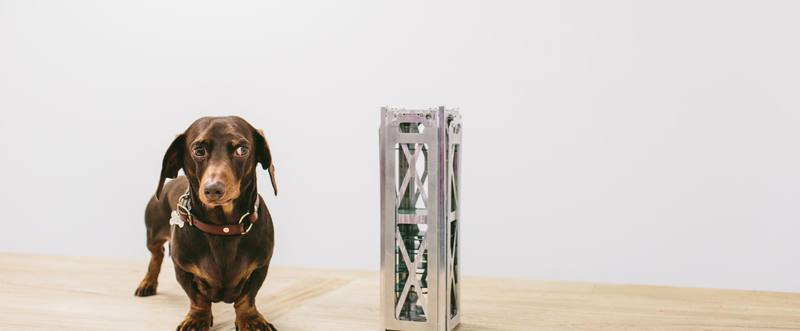 A Fleet nanosatellite and company pooch